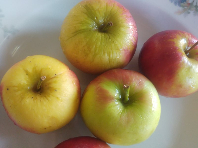 How to dry your own fruit - My Happy Footprint - Zero Waste Recipes