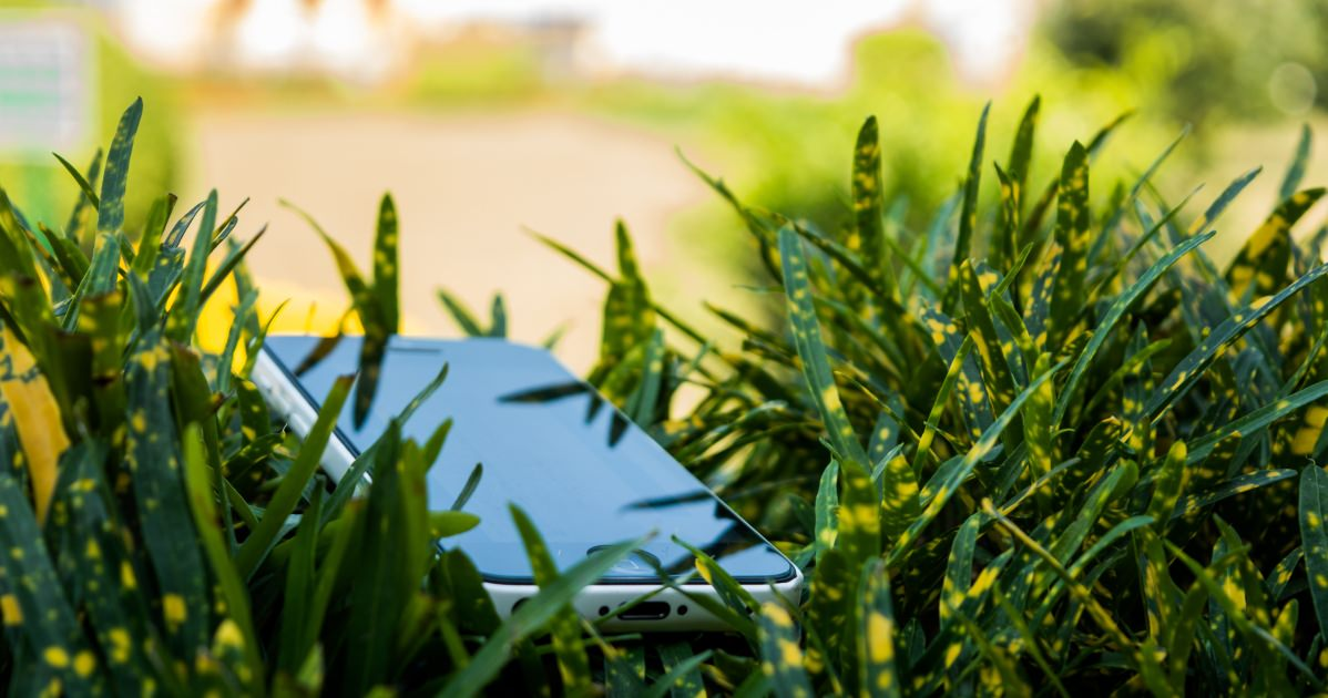 5 easy ways to reduce your internet carbon footprint